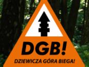 logo dziewicza