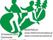 cross logo z data
